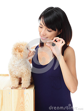 Asian woman feeding poodle dog