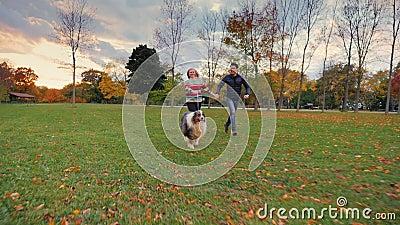 Asiatischer Mann und kaukasische Frau, die in den Park mit seinem Hund läuft Glücklich zusammen, lachend stock video