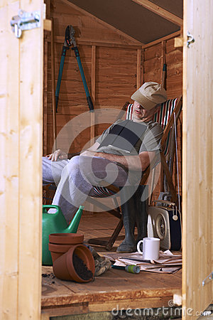 Asleep in shed