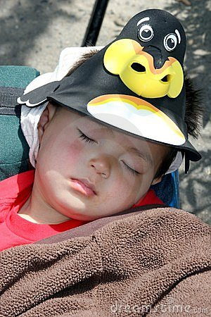 Asleep at the zoo.