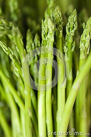 Free Asparagus Stock Photo - 15218950