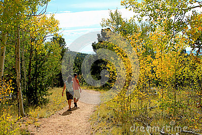 Aspen Walk Royalty Free Stock Image - Image: 24844426