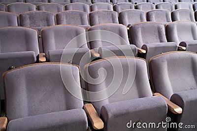 Assentos 13