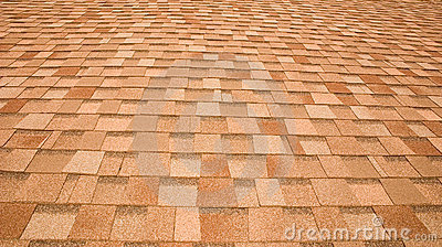Assicelle del tetto