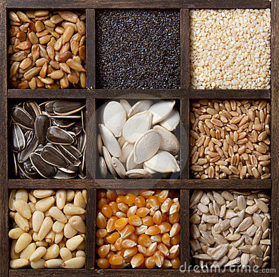 Assorted edible seeds arranged in a box