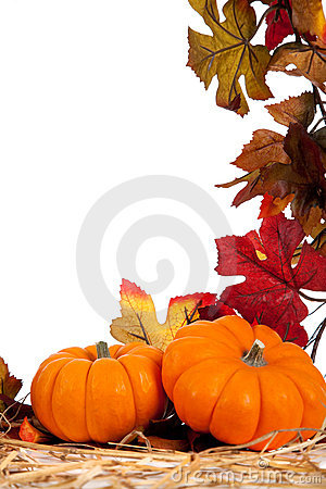 Free Assorted Fall Vegetables As A Background Stock Image - 11466281