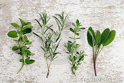 Assorted fresh Herbs