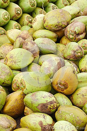 Assorted green coconuts
