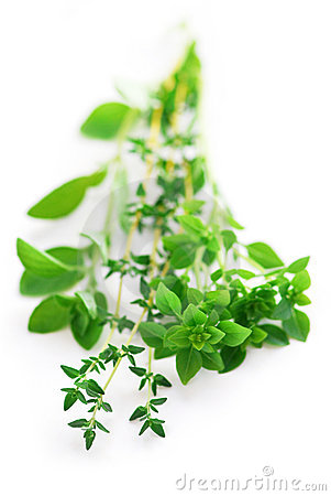 Free Assorted Herbs Royalty Free Stock Image - 3165606