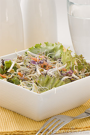 Assorted sprouts salad.