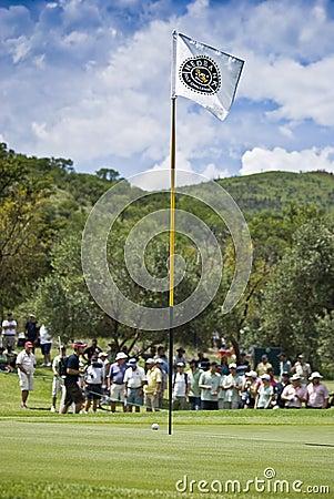 Asta de bandera, bola, verde y muchedumbres - NGC2009 Imagen de archivo editorial