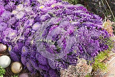 Aster Violet Bouquet