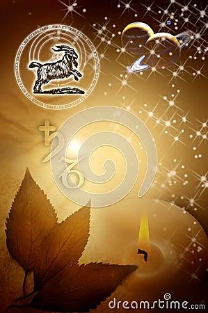Astrological sign Capricorn