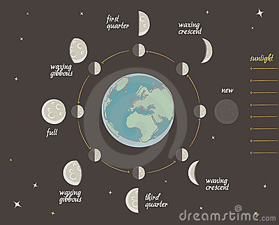 Astronomy lesson: Moon phases vector