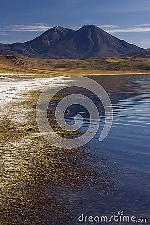 Atacama Desert - Altiplanic Lagoon - Chile
