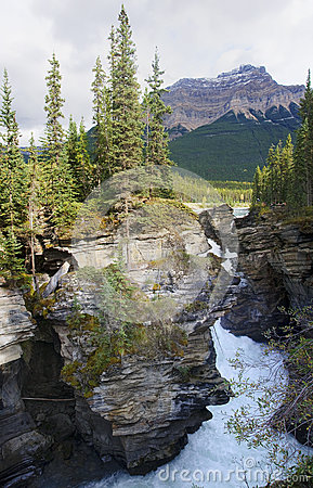 Free Athabasca Falls Near Jasper In Canada Alberta Stock Photo - 81965040