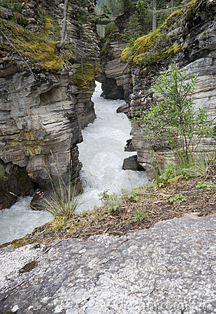 Athabasca falls, view into the gorge