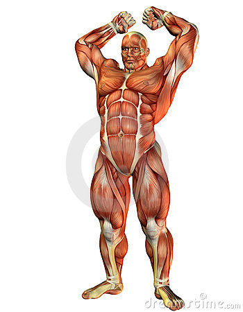 Athlete with muscle strength Pose