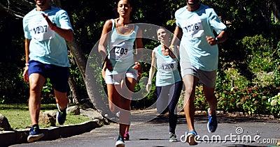 Atletas del maratón que corren en el parque 4k almacen de metraje de vídeo