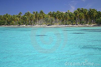 Atoll Rangiroa in French Polynesia