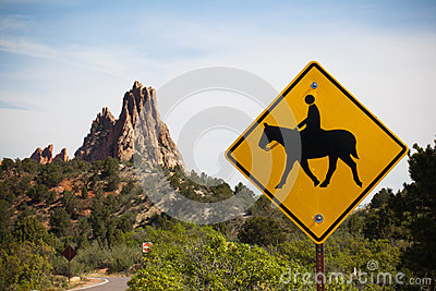 Attention Horse Riding Stock Photo Image 43380437