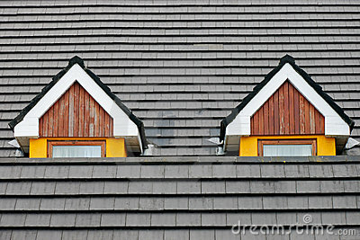 Attic loft windows