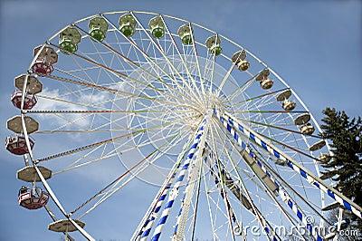 Attraction a survey wheel