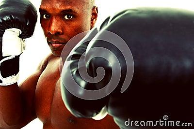Attractive Black Boxer Man over White