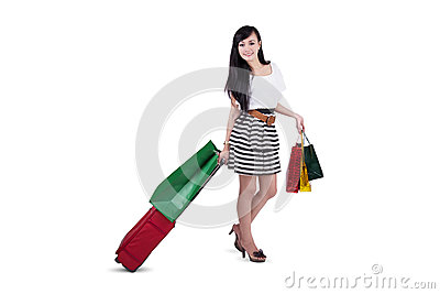Attractive shopper with bags and luggage