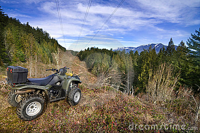 ATV parked overlooking forest
