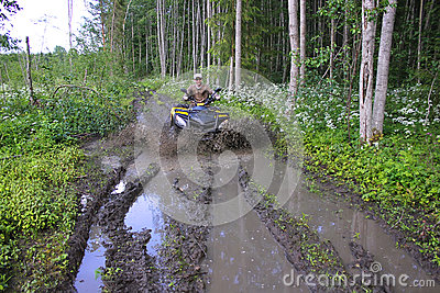 ATV riding in the forest