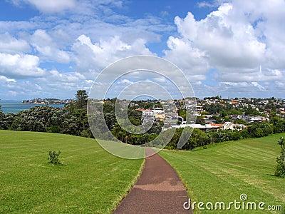 Auckland Grassland