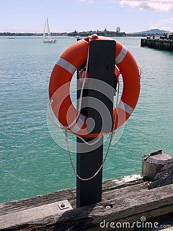 Auckland: life buoy on harbor wharf