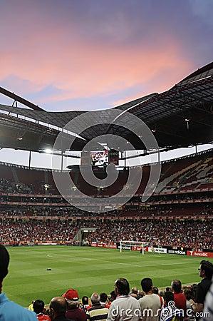 Free Audience At Football Or Soccer Stadium, Lisbon Stock Photo - 25907150