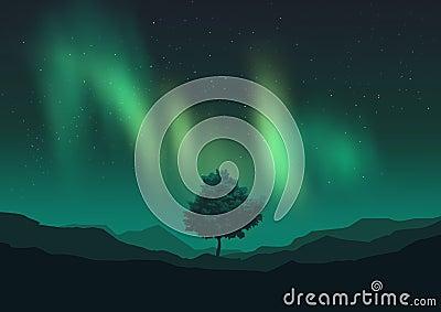 Aurora Borealis Over A Tree