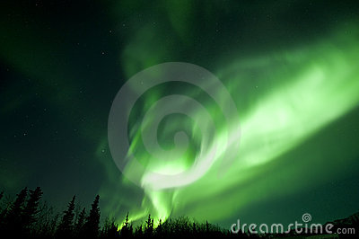 Aurora dinosaur