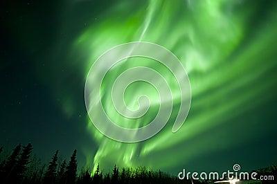 Aurora flutter