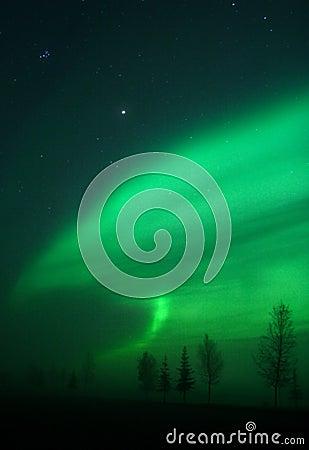 Free Aurora Shape Stock Images - 396724
