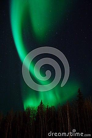Free Aurora Twist Royalty Free Stock Images - 396709