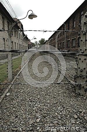 Auschwitz Editorial Photo