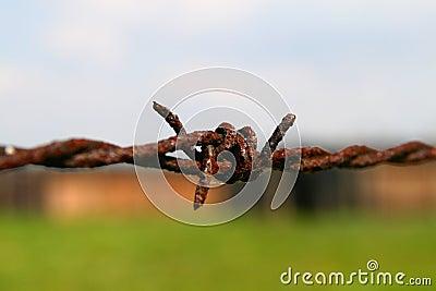 Auschwitz barbed wire fence
