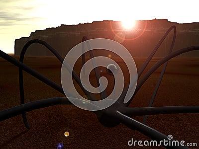 Ausländische Spinne 2