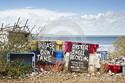 Austeren-Shell-Wiederverwertung