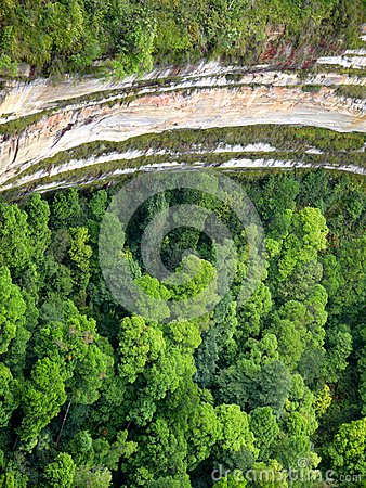 Australia: Blue Mountains rainforest basin