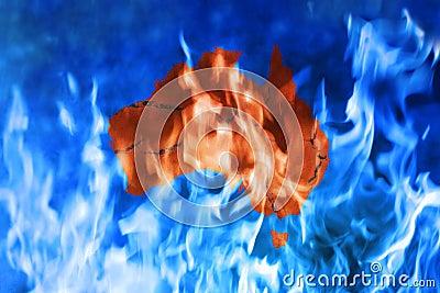 Australia Fire Global Warming