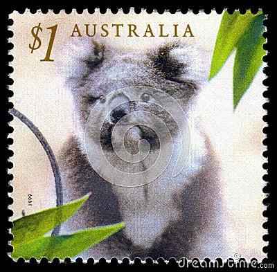 Australia koala postage stamp