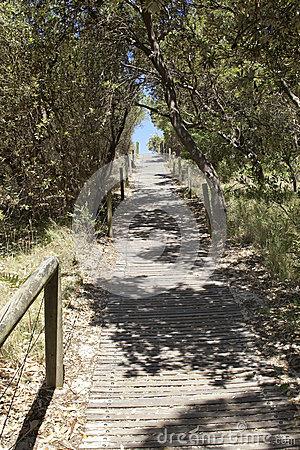 Australian Beach Path