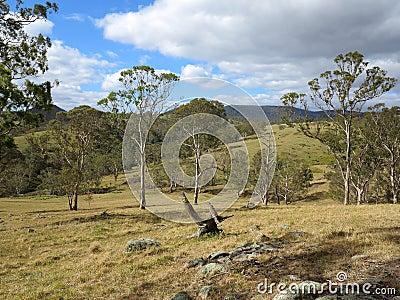 Australian countryside landscape