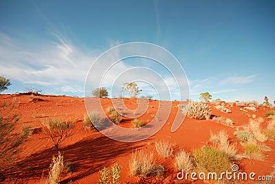 Australian Desert Editorial Stock Image