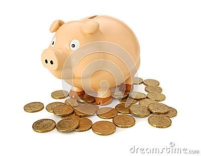 Australian Money Piggy Bank